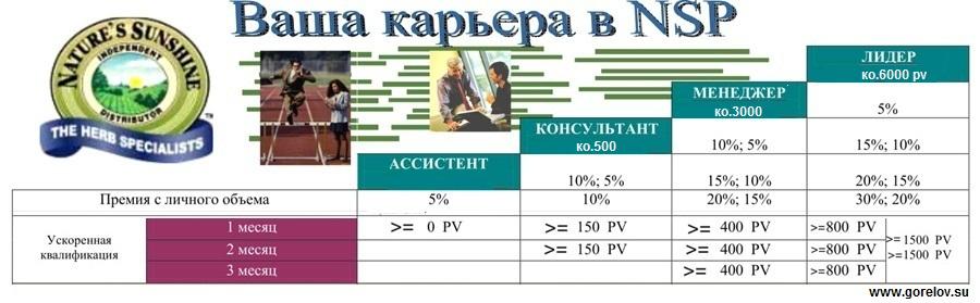 marketing-plan-nsp