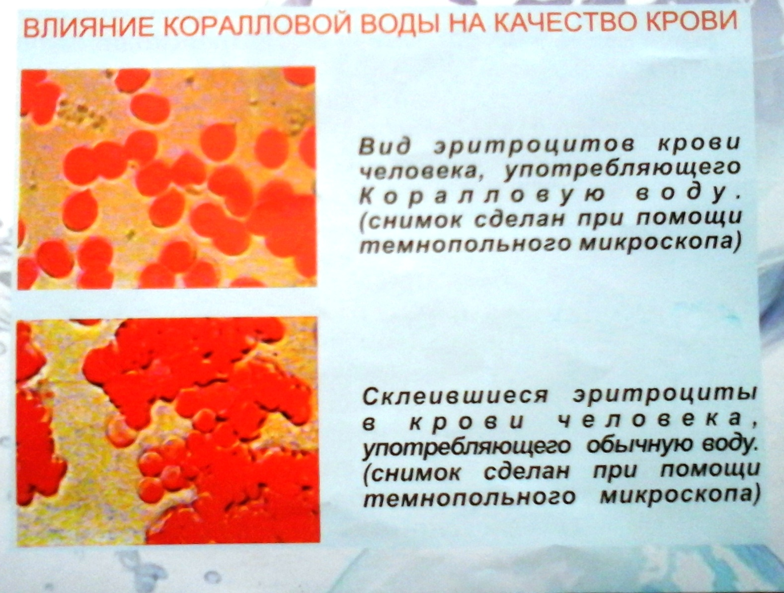 корал кровь