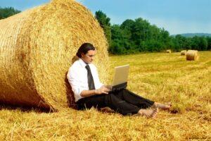 бизнес поле